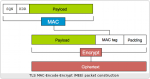 tls-mee-diagram-486